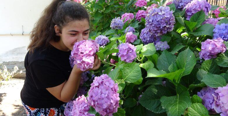 Aydınlı kadınlardan yılda 2 milyon çiçek