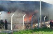Silaj deposunda yangın, 300 ton kuru ot yandı
