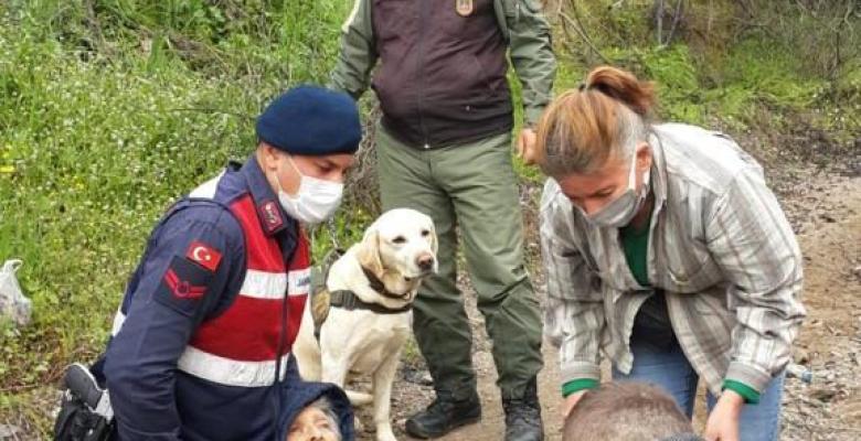 Kaybolan 90 yaşındaki kadını Elbet isimli köpek buldu