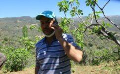 29 yıllık emeğini bastığı tuşlarla telefon dolandırıcılarına kaptırdı