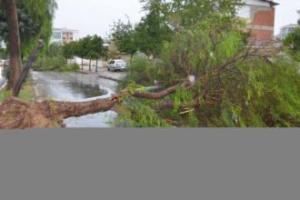 Fırtına AVM'nin Sundurmasını Uçurdu: 6 Yaralı