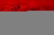 Fırat Kalkanında zırhlı araca saldırı: 1 polis şehit, 3 polis yaralı