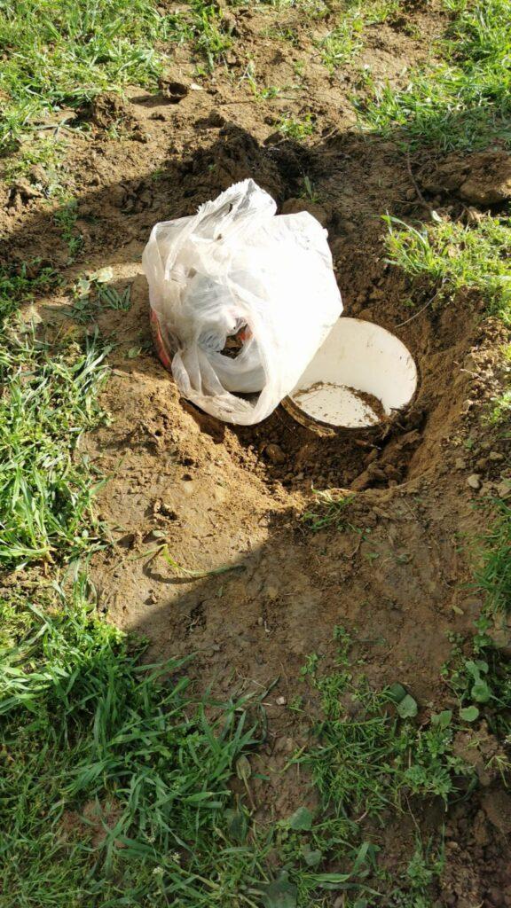 Zeytin ağacı dibine gömülen uyuşturucuyu narkotik köpeği Dilbaz buldu