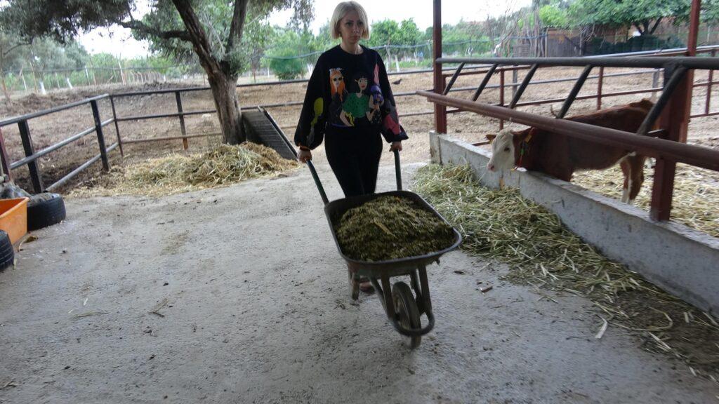 Spikerliği bıraktı, hayvan çiftliği kurdu