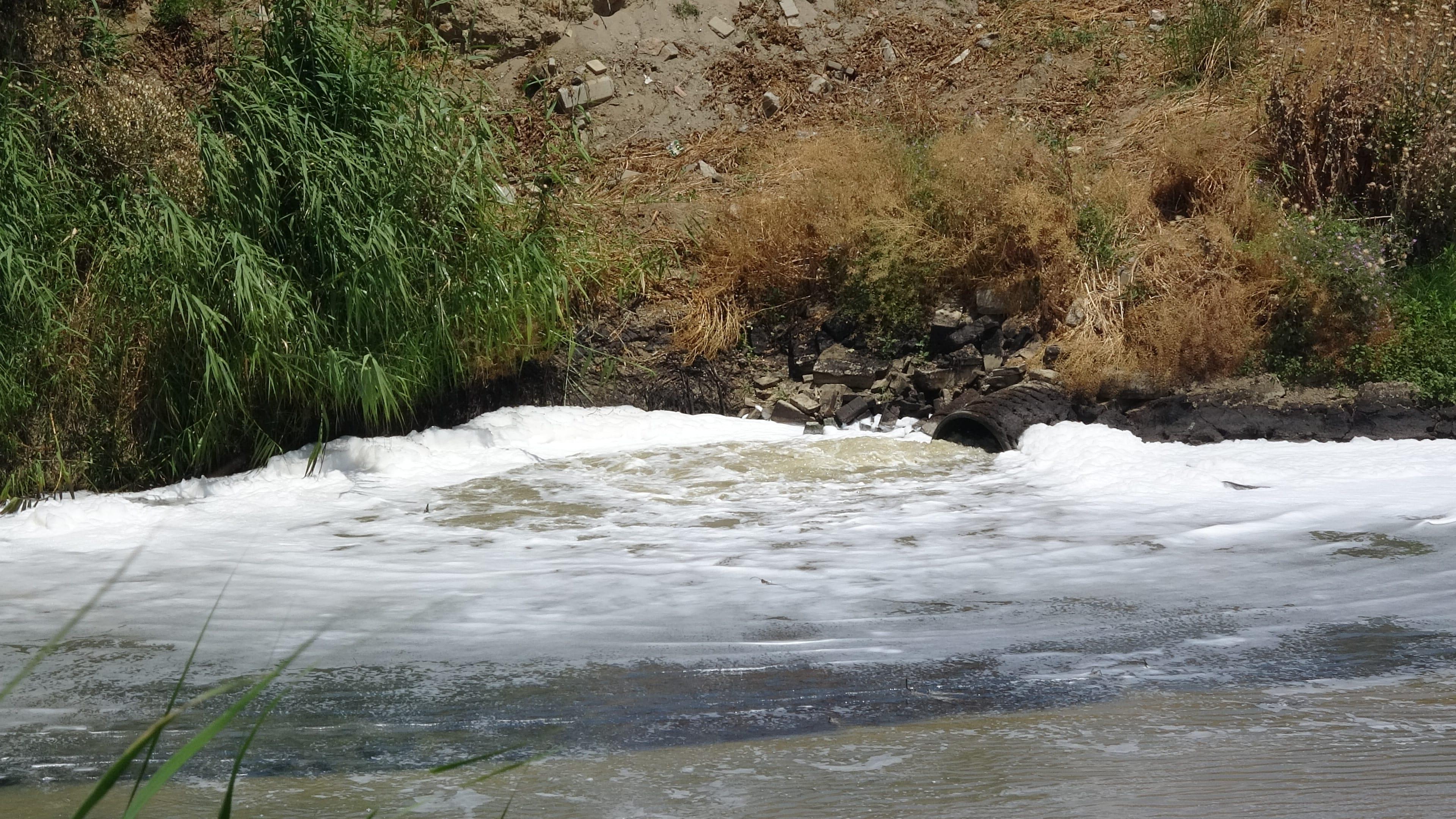 Büyük Menderes Nehrine ihanet ediyoruz