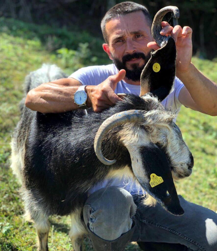 3 boynuzlu keçi görenleri şaşırtıyor