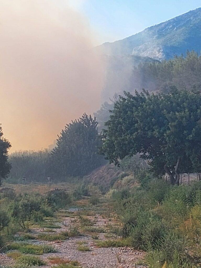 Yine orman yangın çıktı